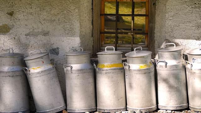 Ugrožena proizvodnja mleka u Srbiji