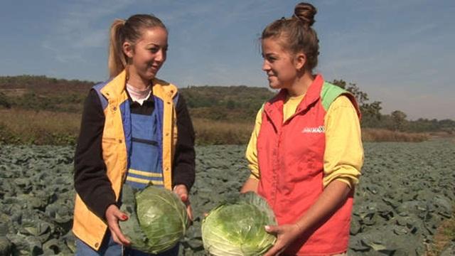 Počinje obuka za mlade u agrobiznisu