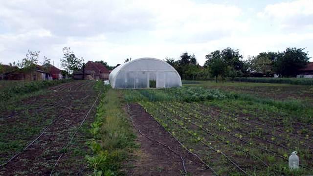 Grad Užice podstiče poljoprivredu
