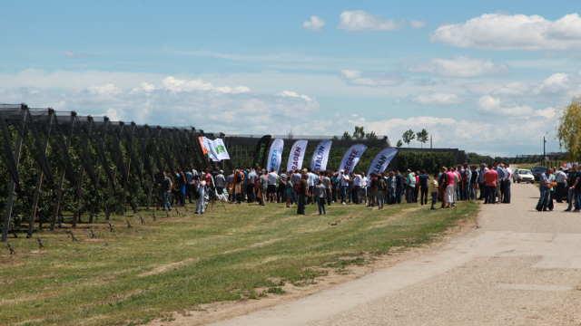 """8. Dani polja kompanije """"Agromarket"""" okupili 900 ljudi"""