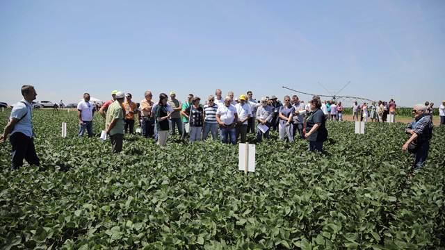 Srpsko BEZ GMO MLEKO - prvo Dunav Soja mleko u Evropi