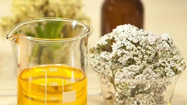 Kako da napravite čajeve, kupke i obloge od hajdučke trave
