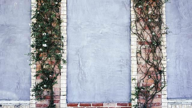 Uređenje dvorišta: Kako da sakrijete neugledne površine