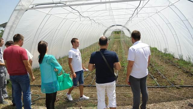 Besplatni plastenici u Kumanu za mlade poljoprivrednike