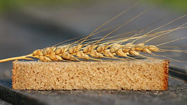Zašto čak i veliki ratari odustaju od gajenja pšenice