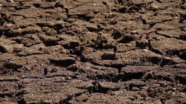 Meteorolozi najavljuju: uskoro osveženje sa kišom