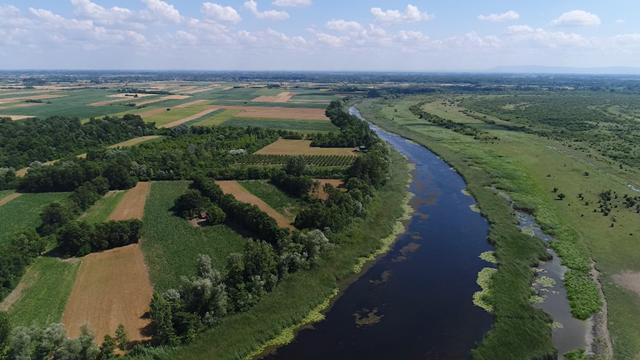 Intenzivne kontrole ribolovnih voda na Dunavu