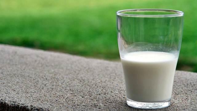Premije za mleko biće isplaćene u najkraćem roku