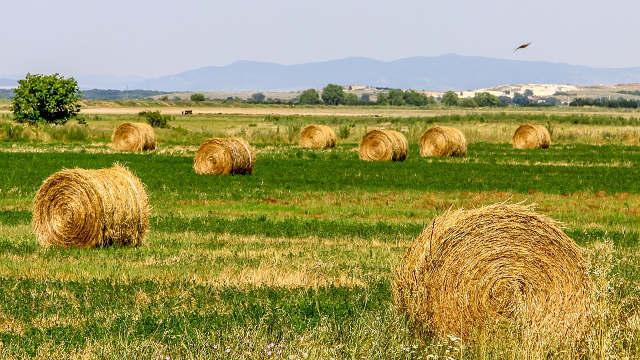Izmene zakona o zemljištu biće usvojene po hitnoj proceduri