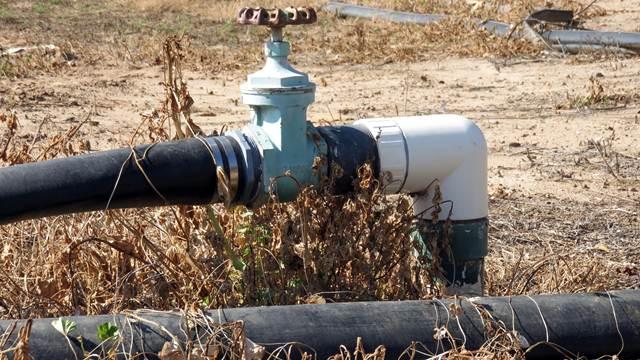 Nedimović: Uskoro pomoć za štetu od suše