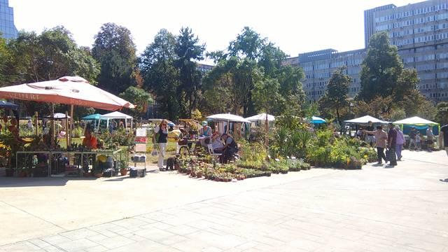 Gajenje cveća -  za neke samo hobi, a za druge unosan biznis