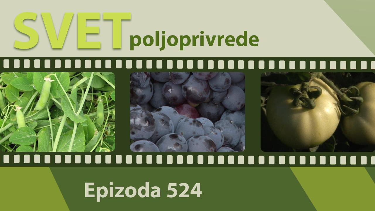 Svet poljoprivrede - epizoda 524.