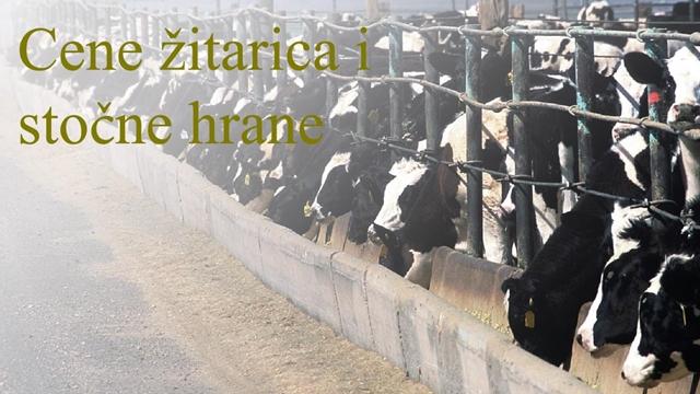 Cene žitarica i stočne hrane za period 06.10-10.10.2017.