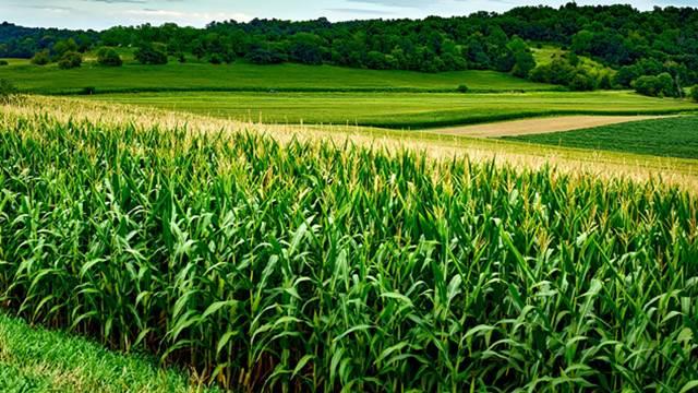 Poljoprivredne vesti vezane za termin: Plodna zemlja | Agromedia