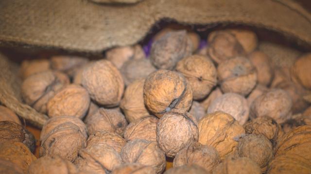 Priprema i način skladištenja oraha utiču na cenu