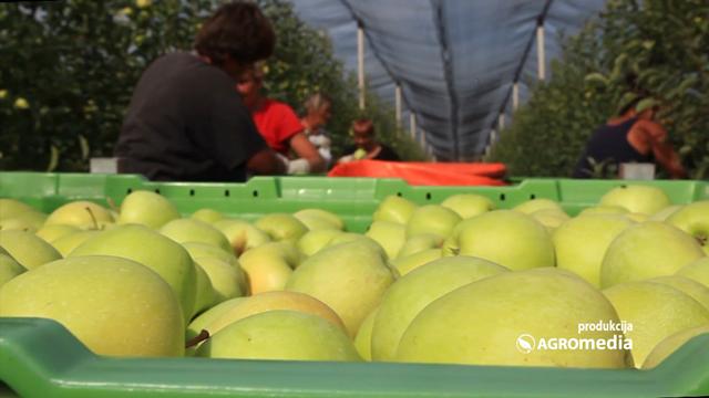 Jugoistočna Evropa sve perspektivnija za uzgoj voća i povrća