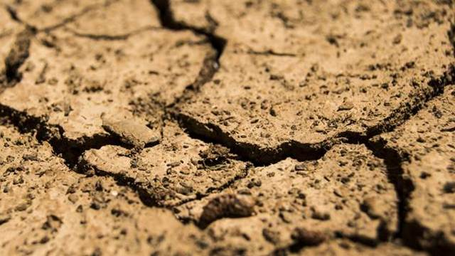 Svet: Raste zabrinutost zbog gladi u Africi