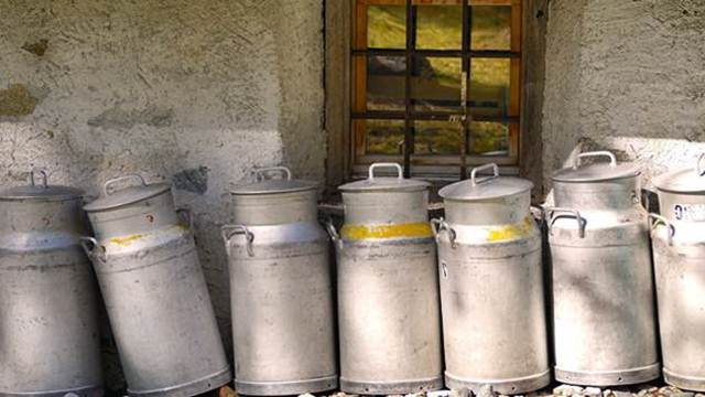Dobrom poljoprivrednom praksom do kvalitetnijeg mleka