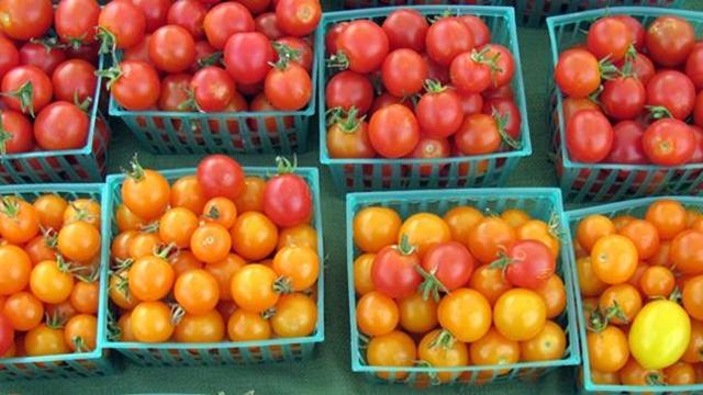 Vanredne kontrole povodom netačne deklaracije na uvoznom paradajzu