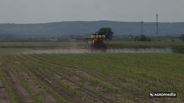Entomopatogene nematode - alternativno rešenje u suzbijanju zemljišnih štetočina