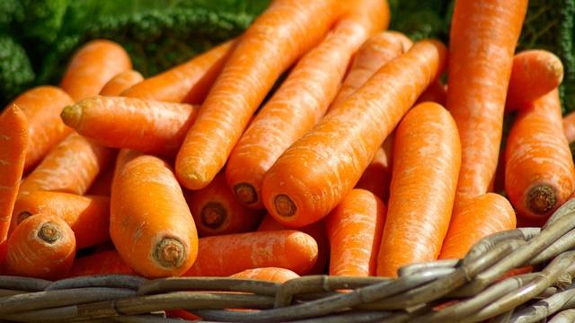 BOLERO - hibrid šargarepe odličan za dugo čuvanje - © Pixabay