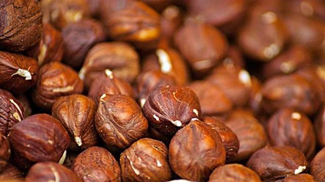 Zdrav sadni materijal jedna je od mera borbe protiv truleža ploda leske