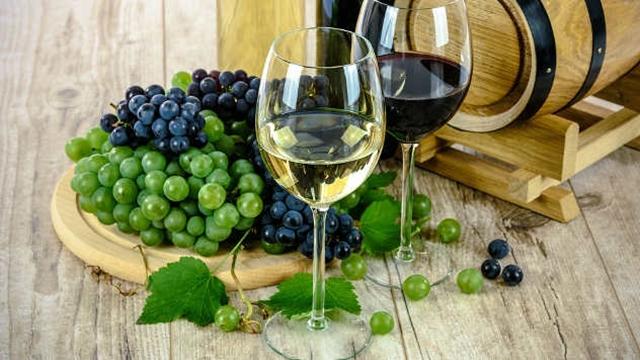 Šta treba da znate ako želite da izvozite vino