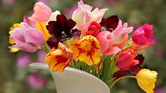 Kako da cveće u vazi duže ostane sveže