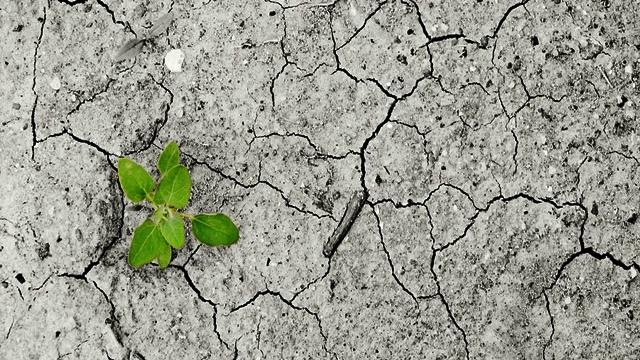 Jesmo li spremni za klimatske promene?