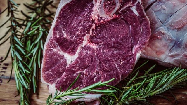 Povećani izvoz govedine u Tursku nova šansa za naše proizvođače