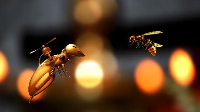 Pčele u službi nadgledanja useva