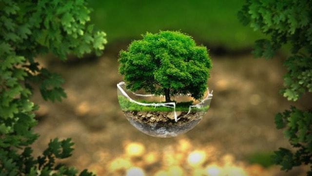 Energetska efikasnost tema konkursa ˶Mladi eko-reporteri˝