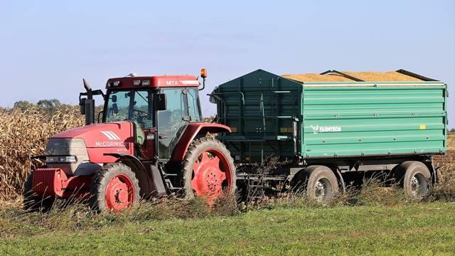 Saznajemo: Koje smo to žitarice izvozili prošle godine i kojoj količini