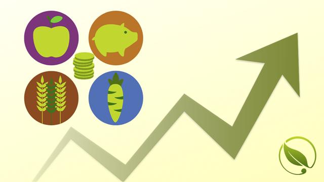 Cene stoke, voća, povrća i cveća za period 25.1-29.1.2019.