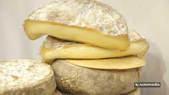 Ko je maznuo moj sir? [AGROFOTO]