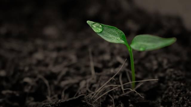Zemljište je obnovljiv resurs ako njime znamo da gazdujemo