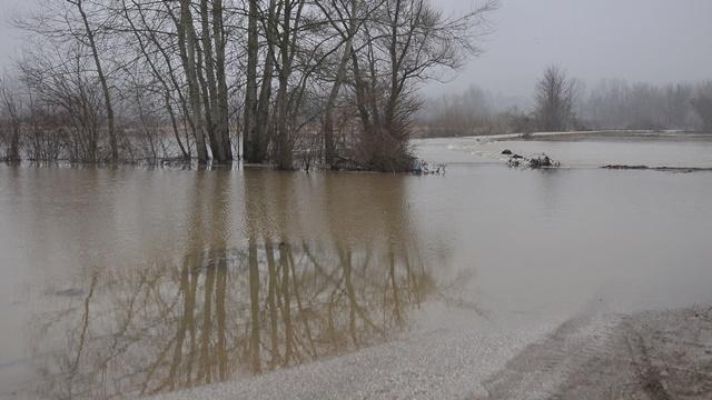 Zapadna Morava poplavila oranice i puteve u kraljevačkom kraju