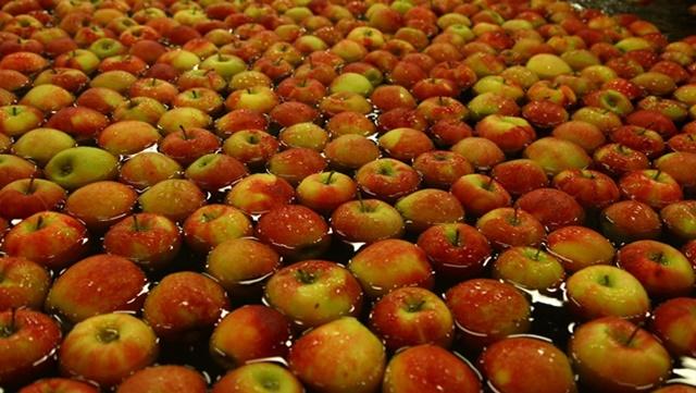 Ko prekrši Ugovor o izvozu voća u Rusiju snosiće daleko oštrije sankcije
