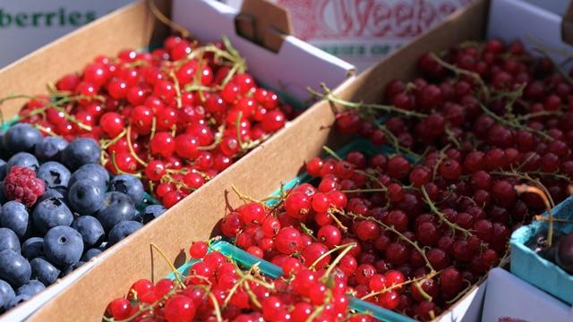 Ne pratimo trendove na tržištu: Najmanje proizvodimo voće u svežem stanju