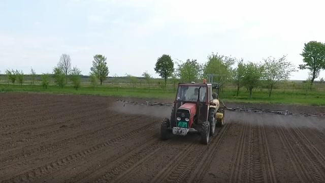 Za kukuruz bez korova: Bitno je delovati zemljišno i preko lista