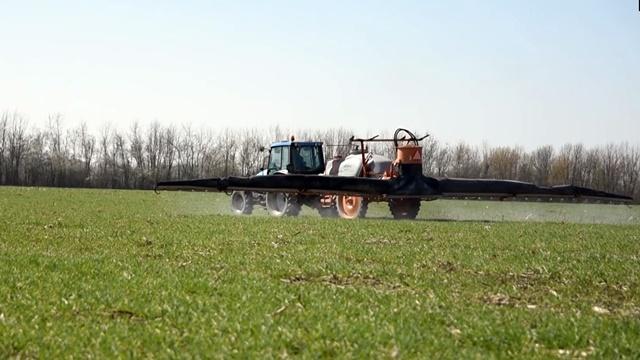 Nema dileme: Zaštita pšenice za siguran prinos i miran san