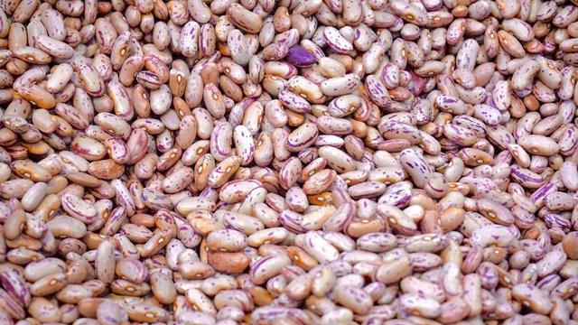 Ove greške u proizvodnji pasulja obično rezultiraju niskim prinosima