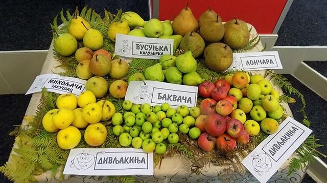 Stare sorte voća i povrća su znatno otpornije - Evo gde ih možete naći