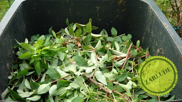 Zablude: Kako se pravi kompost?