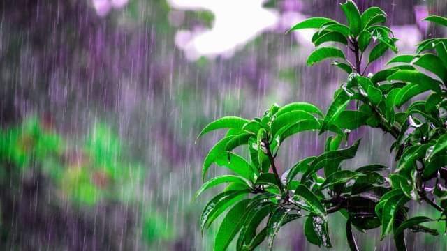 Narednih dana obilne padavine - Moguće izlivanje nekih reka