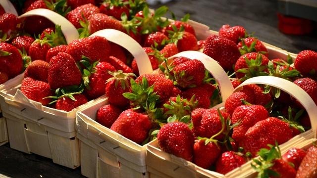Proizvodnja jagode u Srbiji: Prosečni prinos 3,2 tone po hektaru