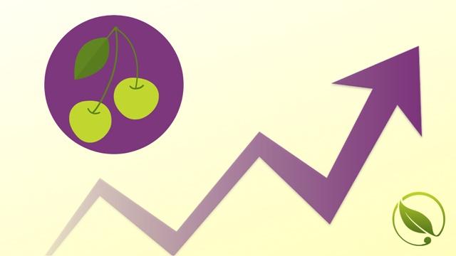 Cene voća za period 31.05-04.06.2019.