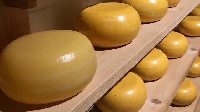 Dozrevanje sira: Komora po HACCP-u ili magacin od drveta iz 1906. godine