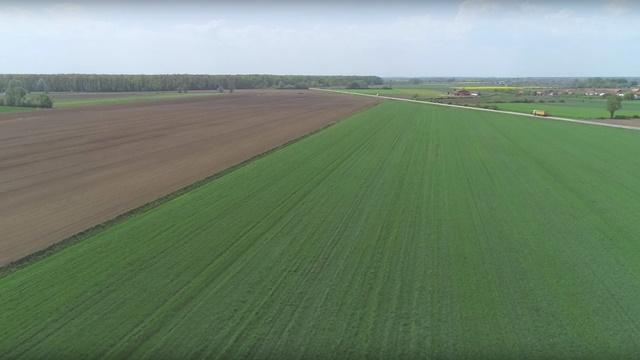 Dani polja kompanije Biofor: Ratari zadovoljni efektima mikrobioloških đubriva