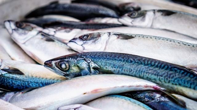Nemojte praviti ove greške: Kako odabrati uvek SVEŽU ribu?